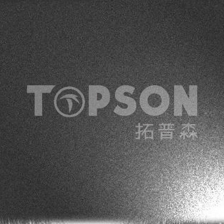 Topson antifingerprint stainless steel embossed plate for business for kitchen-4