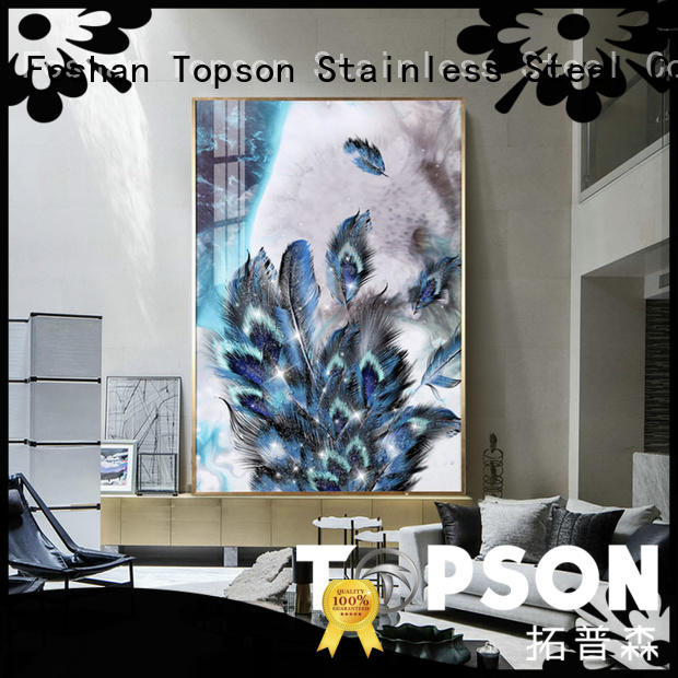Topson worksglass glass railing suppliers for manufacturer for TV wall