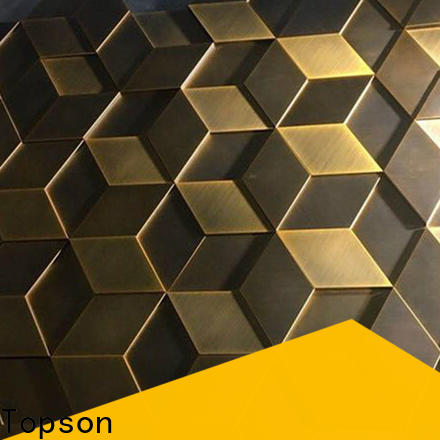 Topson professional stainless steel cladding fixings for business for elevator